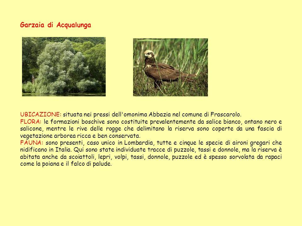 Garzaia di Acqualunga UBICAZIONE: situata nei pressi dell'omonima Abbazia nel comune di Frascarolo. FLORA: le formazioni boschive sono costituite prev