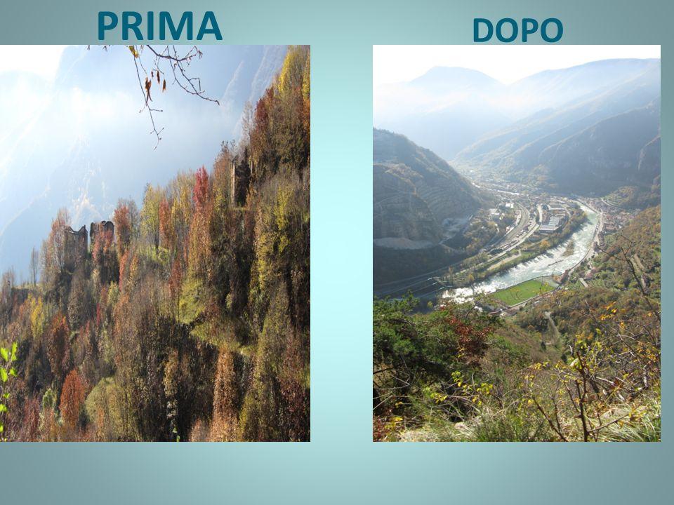 Nella diapositiva precedente è stato presentato il confronto Tra il prima e il dopo lindustrializzazione.
