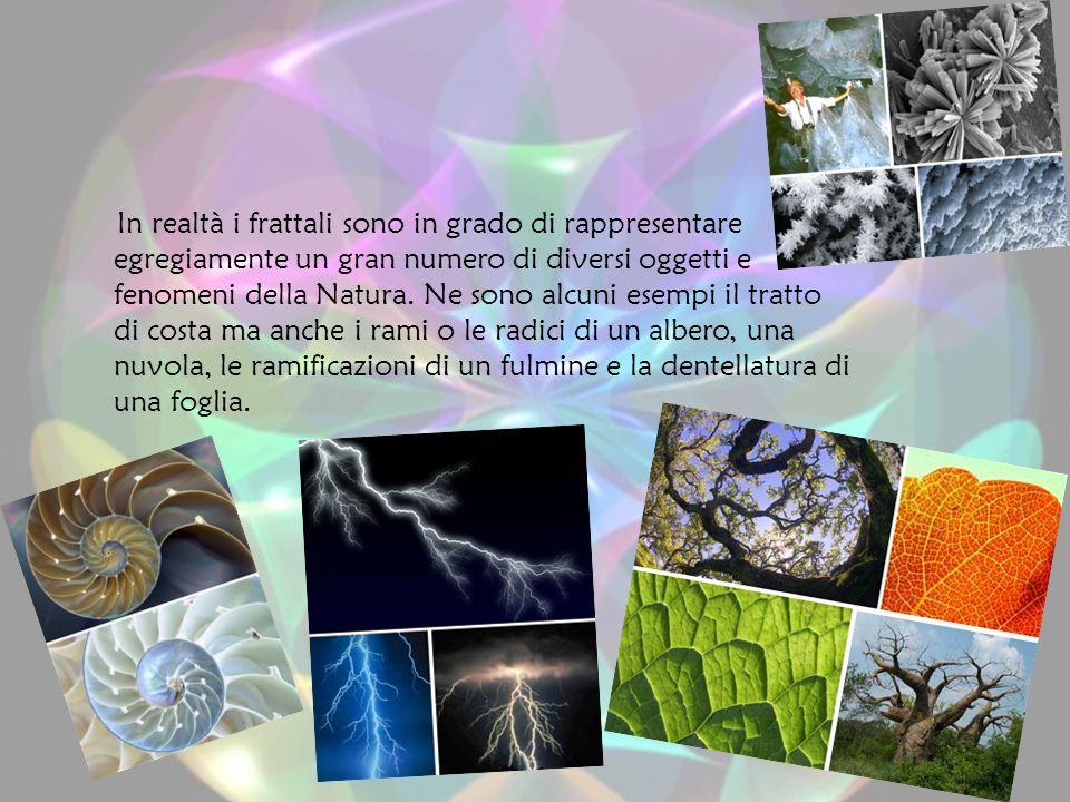 In realtà i frattali sono in grado di rappresentare egregiamente un gran numero di diversi oggetti e fenomeni della Natura.