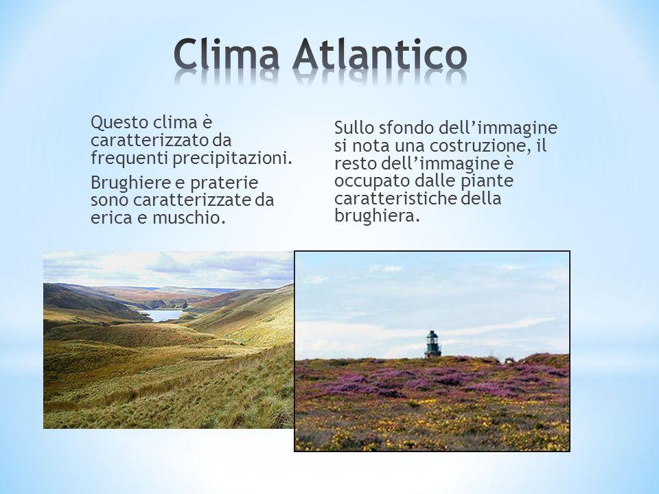 Questo clima è caratterizzato da frequenti precipitazioni. Brughiere e praterie sono caratterizzate da erica e muschio. Sullo sfondo dellimmagine si n
