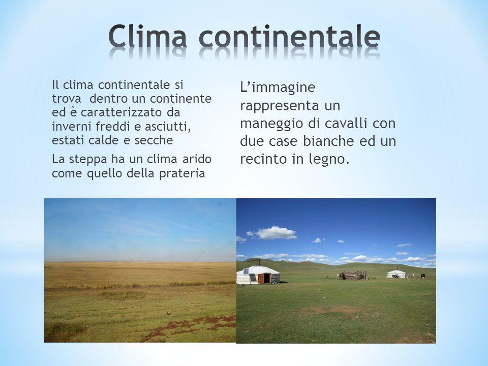Il clima continentale si trova dentro un continente ed è caratterizzato da inverni freddi e asciutti, estati calde e secche La steppa ha un clima arid