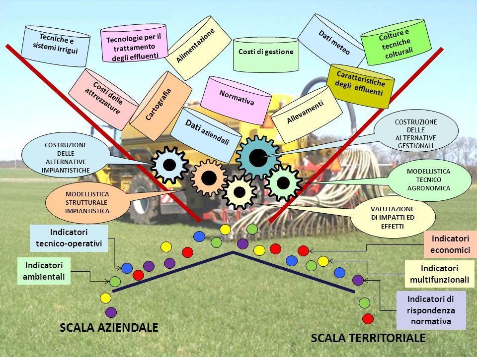 Dati meteo COSTRUZIONE DELLE ALTERNATIVE IMPIANTISTICHE MODELLISTICA STRUTTURALE- IMPIANTISTICA COSTRUZIONE DELLE ALTERNATIVE GESTIONALI VALUTAZIONE DI IMPATTI ED EFFETTI SCALA AZIENDALE Indicatori ambientali MODELLISTICA TECNICO AGRONOMICA Indicatori tecnico-operativi Indicatori economici Indicatori multifunzionali Indicatori di rispondenza normativa SCALA TERRITORIALE Costi delle attrezzature Costi di gestione Caratteristiche degli effluenti Cartografia Normativa Colture e tecniche colturali Tecniche e sistemi irrigui Alimentazione Dati aziendali Allevamenti Tecnologie per il trattamento degli effluenti