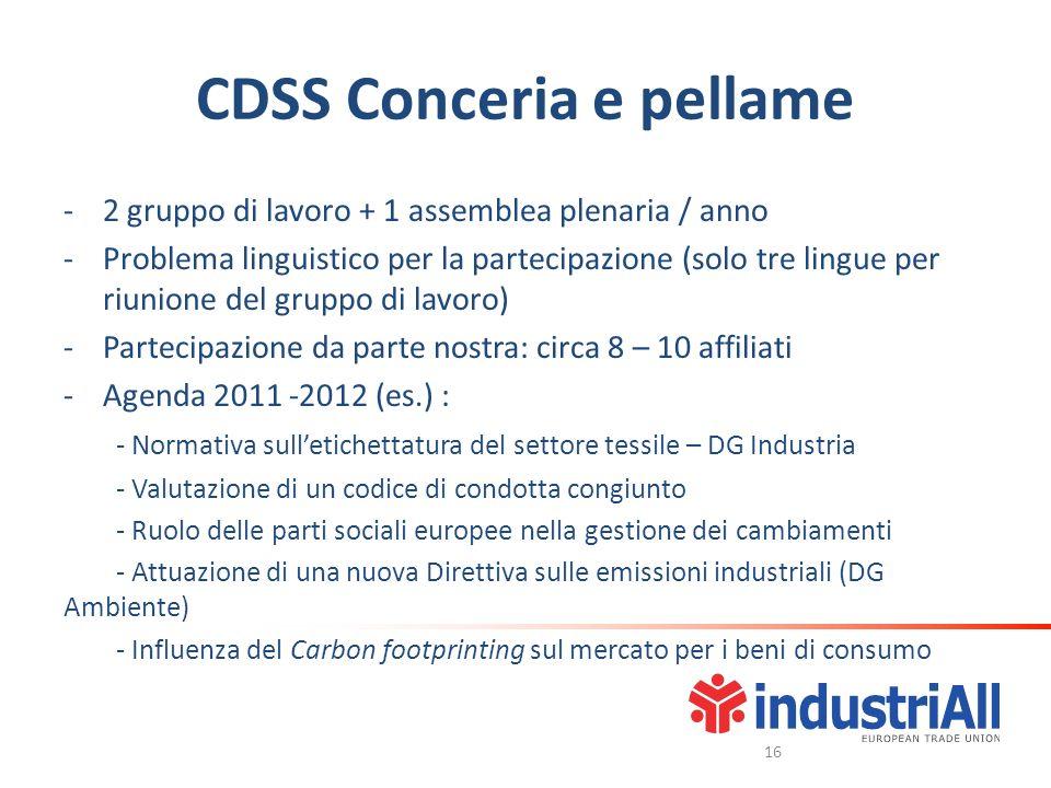 CDSS Conceria e pellame -2 gruppo di lavoro + 1 assemblea plenaria / anno -Problema linguistico per la partecipazione (solo tre lingue per riunione de