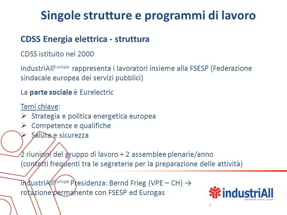 Singole strutture e programmi di lavoro CDSS Energia elettrica - struttura CDSS istituito nel 2000 industriAll Europe rappresenta i lavoratori insieme