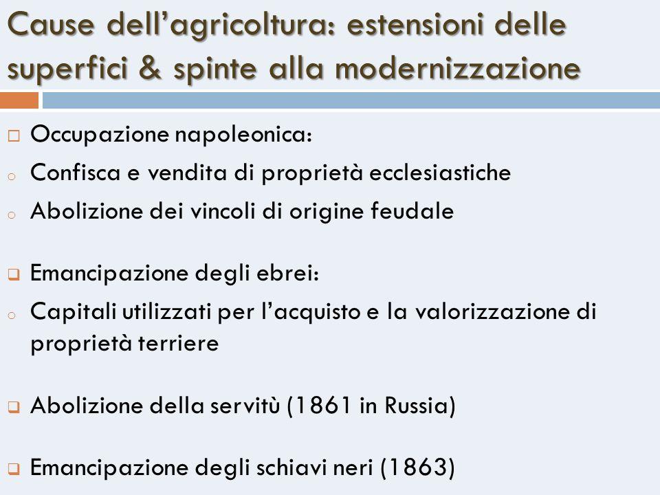 Cause dellagricoltura: estensioni delle superfici & spinte alla modernizzazione Occupazione napoleonica: o Confisca e vendita di proprietà ecclesiasti