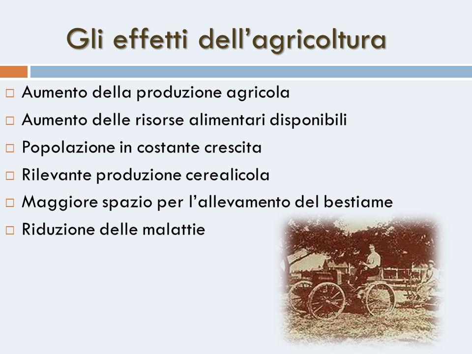 Gli effetti dellagricoltura Aumento della produzione agricola Aumento delle risorse alimentari disponibili Popolazione in costante crescita Rilevante