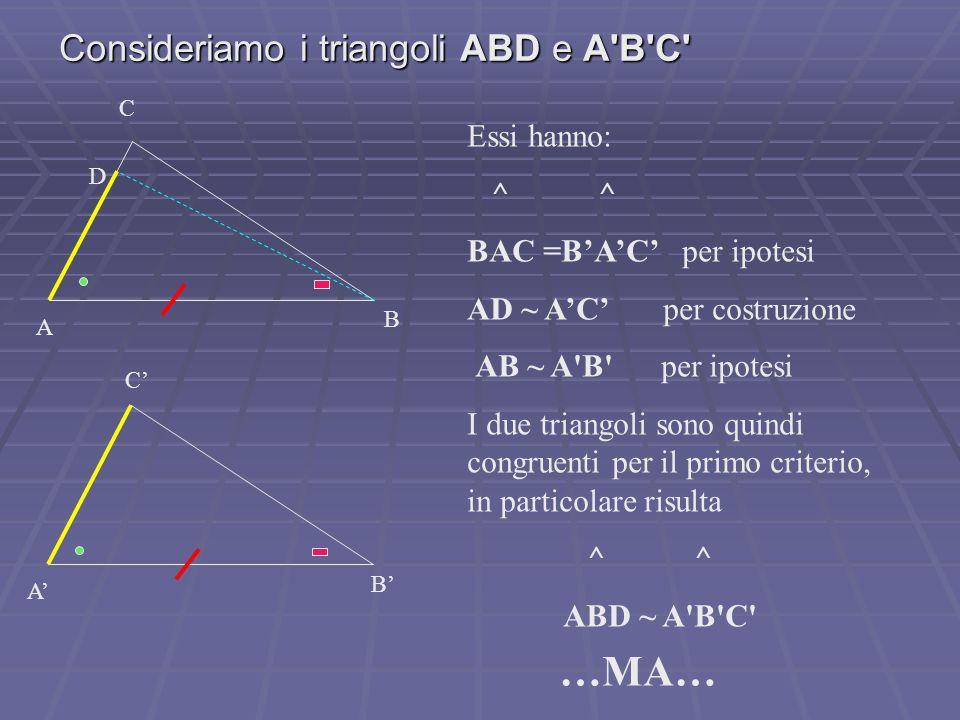 Consideriamo i triangoli ABD e A'B'C' C A B C A B Essi hanno: ^ ^ BAC =BAC per ipotesi AD ~ AC per costruzione AB ~ A'B' per ipotesi I due triangoli s