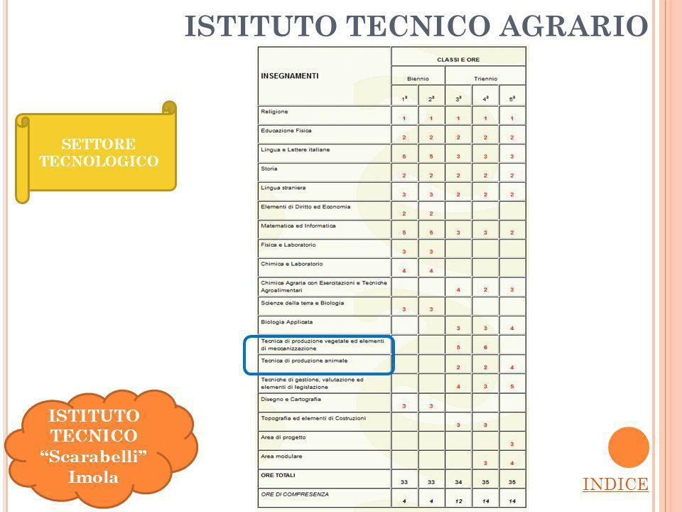ISTITUTO TECNICO AGRARIO INDICE SETTORE TECNOLOGICO ISTITUTO TECNICO Scarabelli Imola