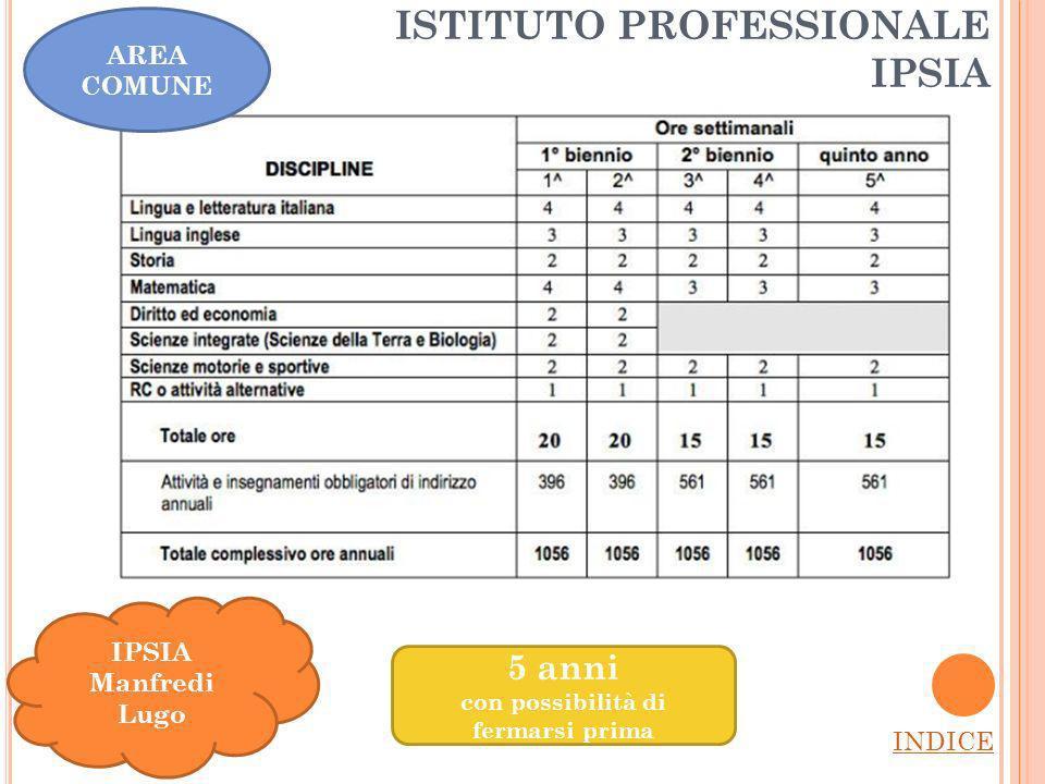ISTITUTO PROFESSIONALE IPSIA INDICE IPSIA Manfredi Lugo AREA COMUNE 5 anni con possibilità di fermarsi prima