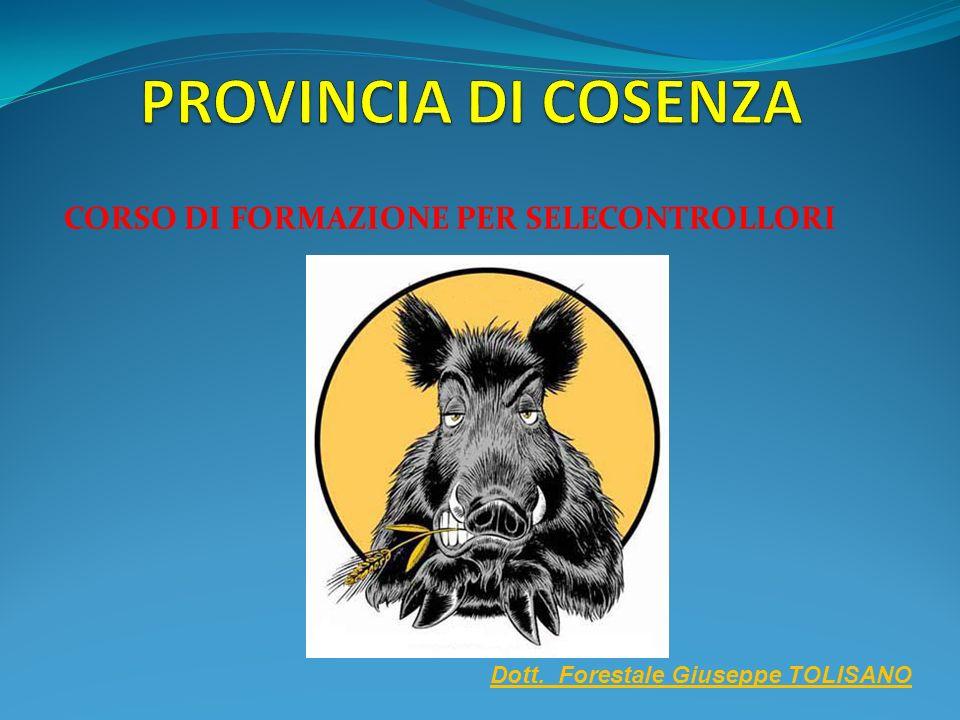 CORSO DI FORMAZIONE PER SELECONTROLLORI Dott. Forestale Giuseppe TOLISANO