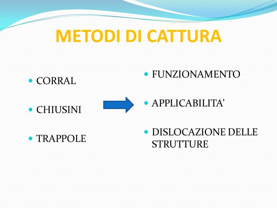 METODI DI CATTURA CORRAL CHIUSINI TRAPPOLE FUNZIONAMENTO APPLICABILITA DISLOCAZIONE DELLE STRUTTURE