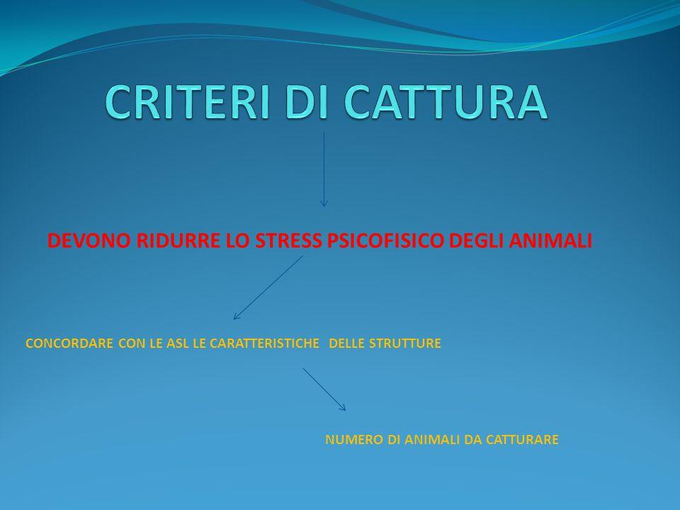 DEVONO RIDURRE LO STRESS PSICOFISICO DEGLI ANIMALI CONCORDARE CON LE ASL LE CARATTERISTICHE DELLE STRUTTURE NUMERO DI ANIMALI DA CATTURARE