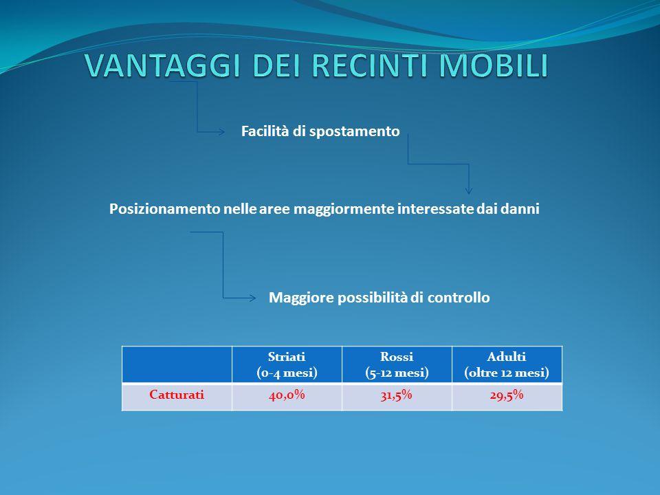 Posizionamento nelle aree maggiormente interessate dai danni Facilità di spostamento Maggiore possibilità di controllo Striati (0-4 mesi) Rossi (5-12