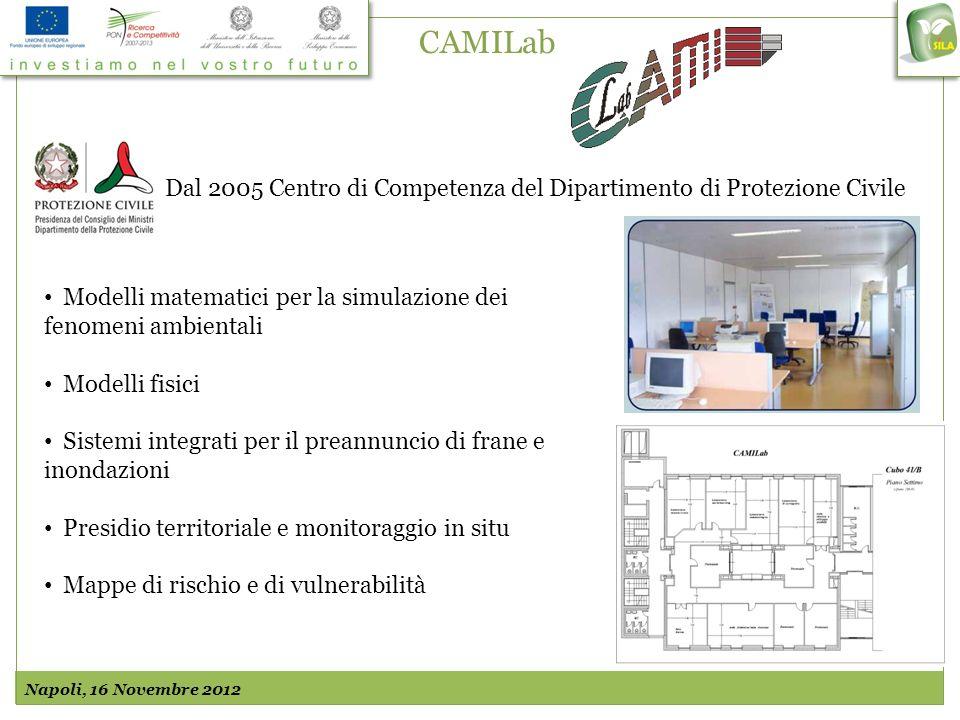 CAMILab Dal 2005 Centro di Competenza del Dipartimento di Protezione Civile Modelli matematici per la simulazione dei fenomeni ambientali Modelli fisi