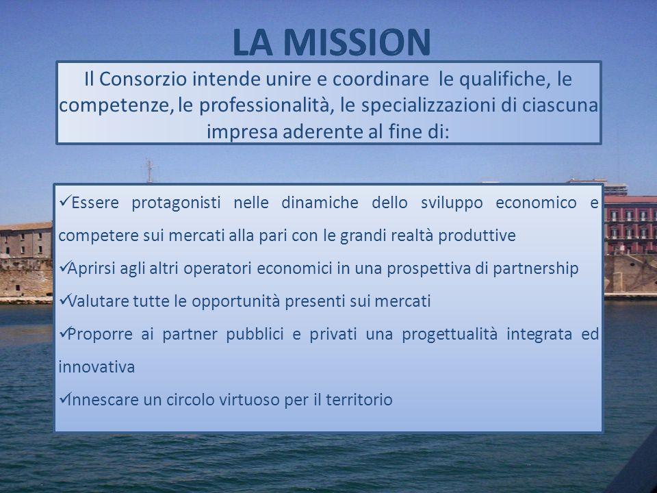 Il Consorzio intende unire e coordinare le qualifiche, le competenze, le professionalità, le specializzazioni di ciascuna impresa aderente al fine di: