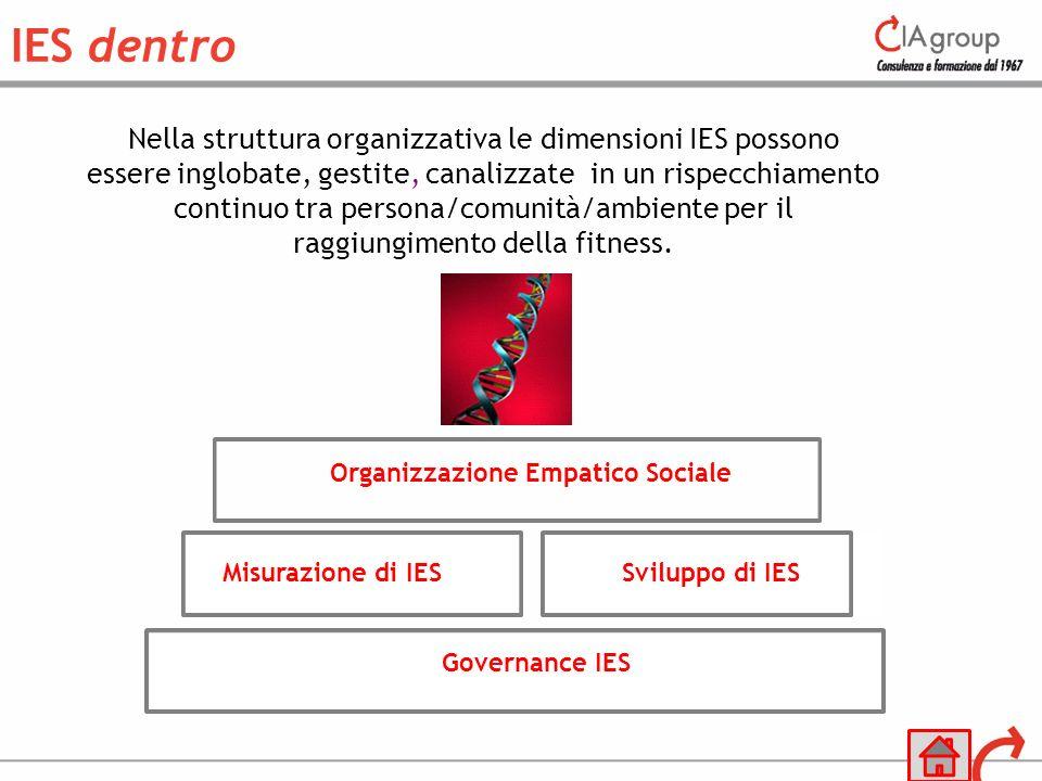 Nella struttura organizzativa le dimensioni IES possono essere inglobate, gestite, canalizzate in un rispecchiamento continuo tra persona/comunità/amb
