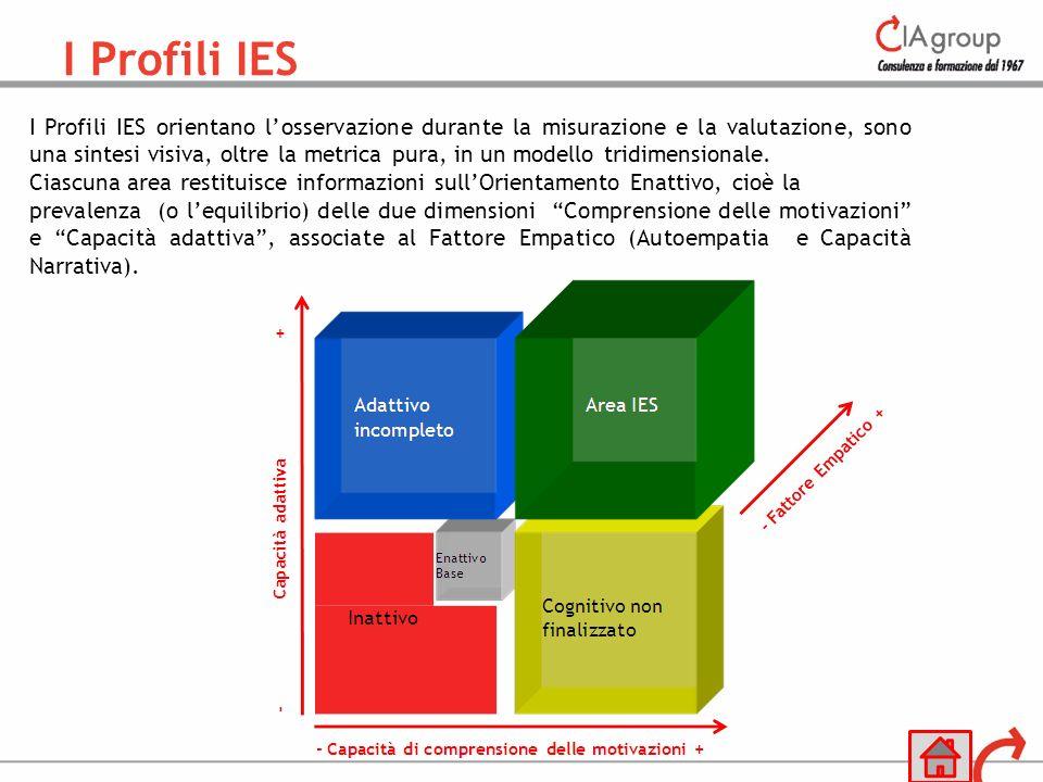 I Profili IES orientano losservazione durante la misurazione e la valutazione, sono una sintesi visiva, oltre la metrica pura, in un modello tridimens