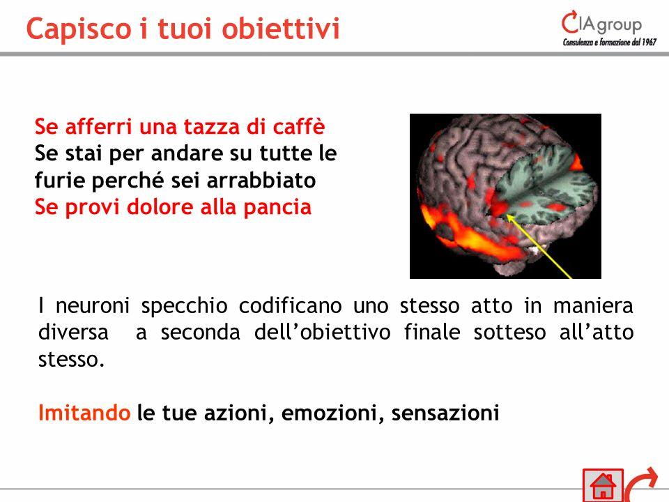 Se afferri una tazza di caffè Se stai per andare su tutte le furie perché sei arrabbiato Se provi dolore alla pancia I neuroni specchio codificano uno