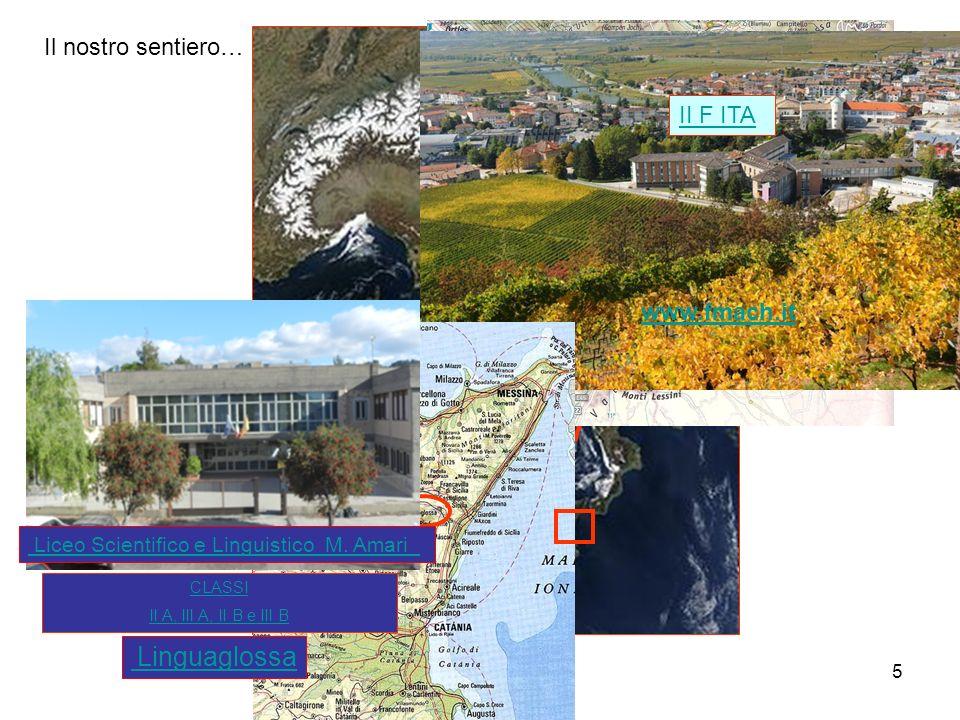 6 Il nostro progetto: filo conduttore Il castagno Castagni a Castione - TN Castagno dei Cento cavalli a S.