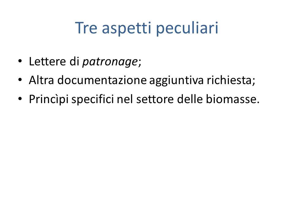 Tre aspetti peculiari Lettere di patronage; Altra documentazione aggiuntiva richiesta; Princìpi specifici nel settore delle biomasse.