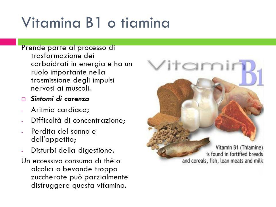 Vitamina B1 o tiamina Prende parte al processo di trasformazione dei carboidrati in energia e ha un ruolo importante nella trasmissione degli impulsi