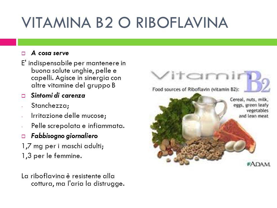 VITAMINA B2 O RIBOFLAVINA A cosa serve E' indispensabile per mantenere in buona salute unghie, pelle e capelli. Agisce in sinergia con altre vitamine