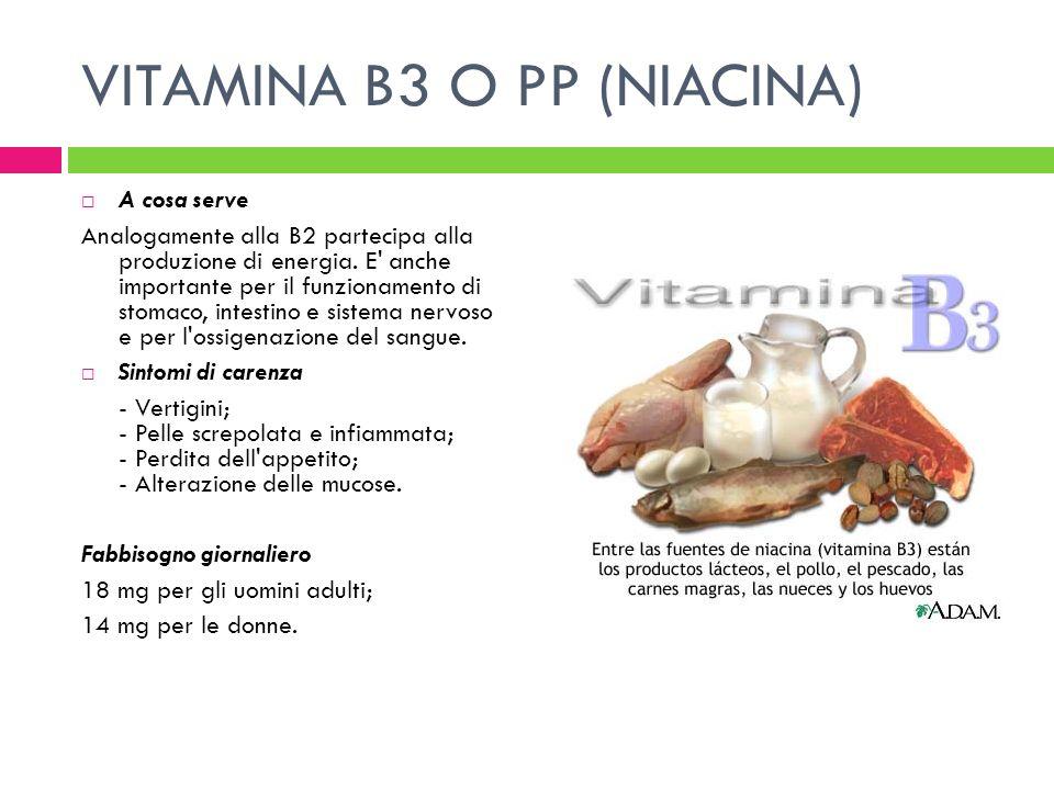 VITAMINA B3 O PP (NIACINA) A cosa serve Analogamente alla B2 partecipa alla produzione di energia. E' anche importante per il funzionamento di stomaco
