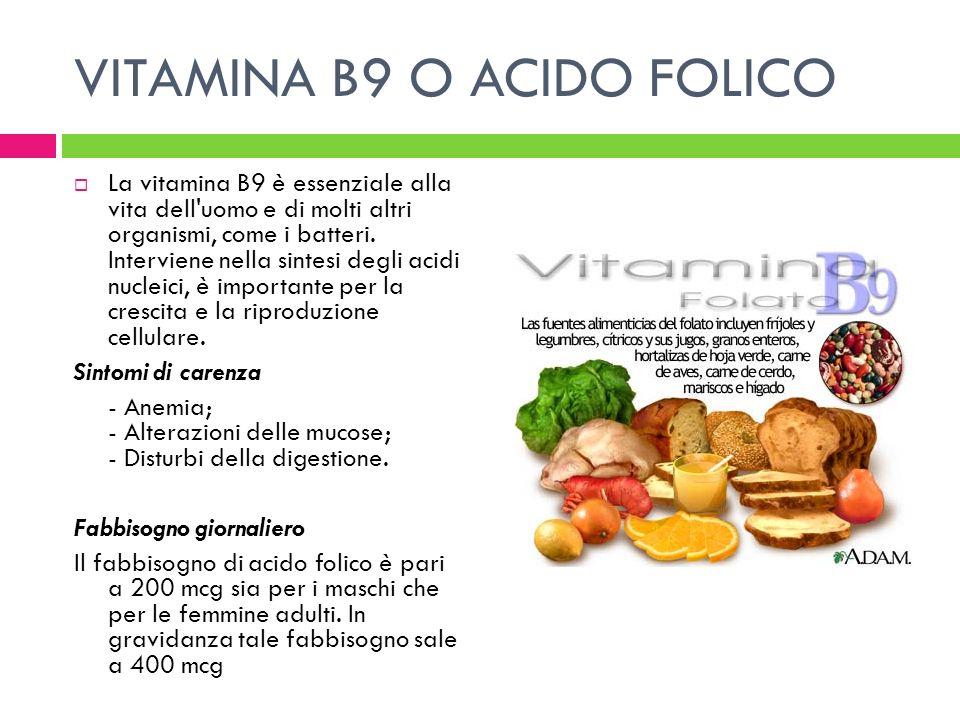 VITAMINA B9 O ACIDO FOLICO La vitamina B9 è essenziale alla vita dell'uomo e di molti altri organismi, come i batteri. Interviene nella sintesi degli