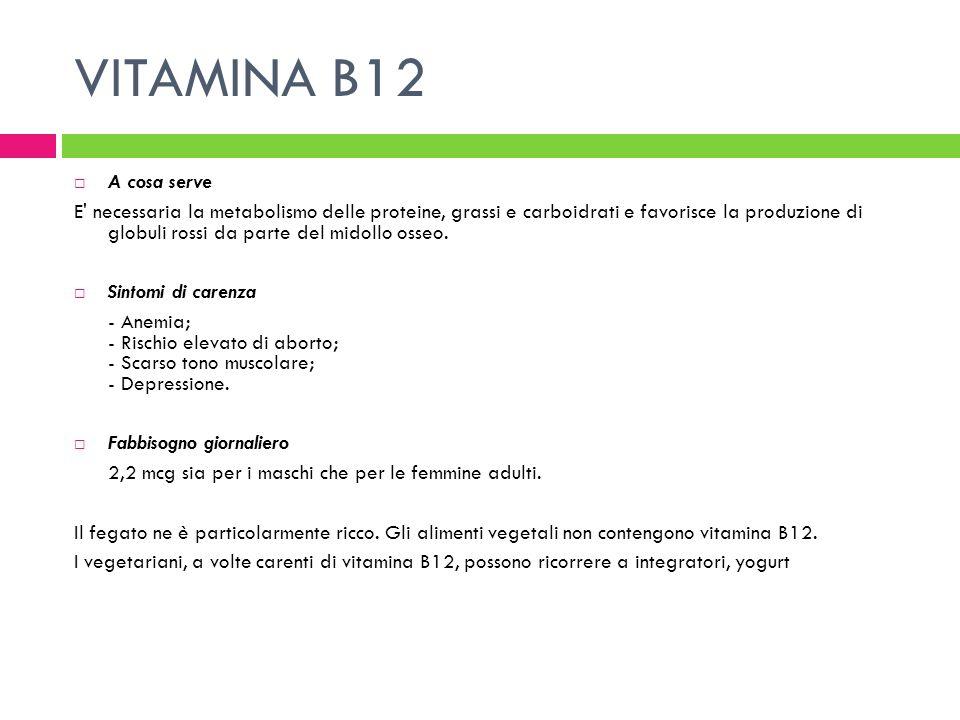 VITAMINA B12 A cosa serve E' necessaria la metabolismo delle proteine, grassi e carboidrati e favorisce la produzione di globuli rossi da parte del mi