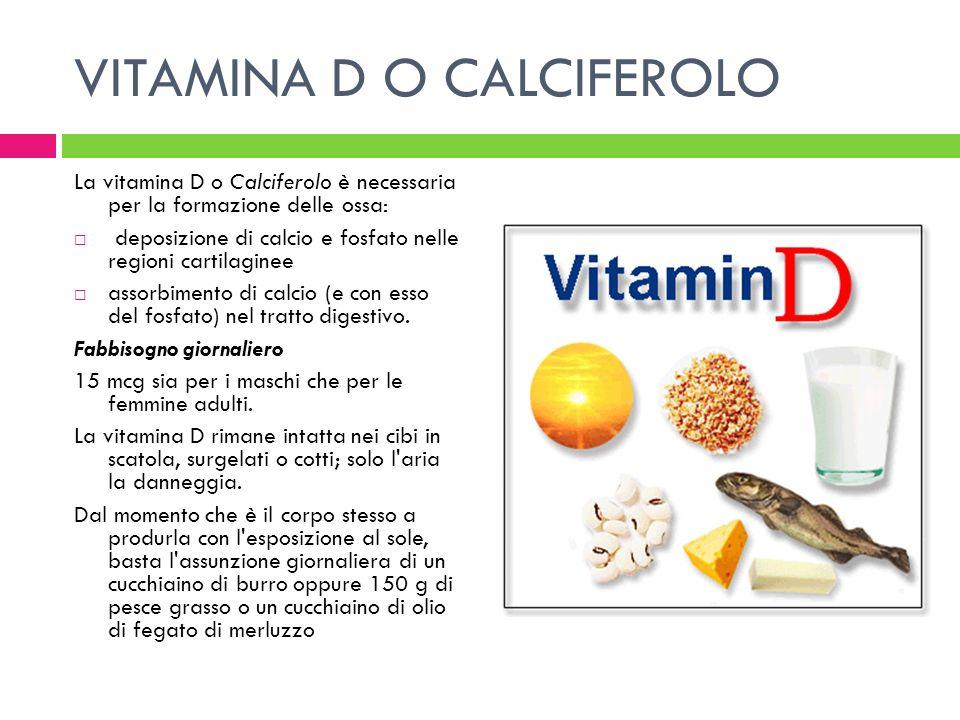VITAMINA D O CALCIFEROLO La vitamina D o Calciferolo è necessaria per la formazione delle ossa: deposizione di calcio e fosfato nelle regioni cartilag