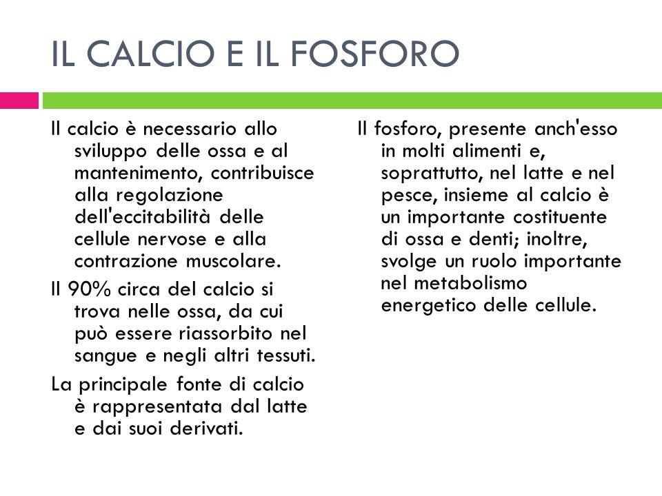 IL CALCIO E IL FOSFORO Il calcio è necessario allo sviluppo delle ossa e al mantenimento, contribuisce alla regolazione dell'eccitabilità delle cellul
