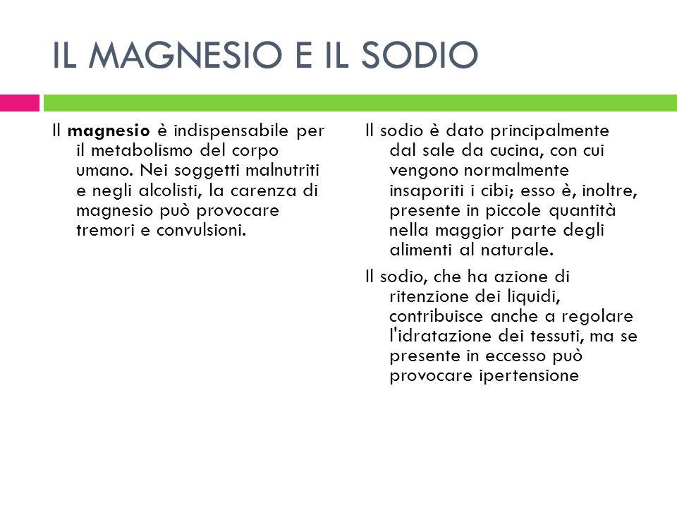 IL MAGNESIO E IL SODIO Il magnesio è indispensabile per il metabolismo del corpo umano. Nei soggetti malnutriti e negli alcolisti, la carenza di magne