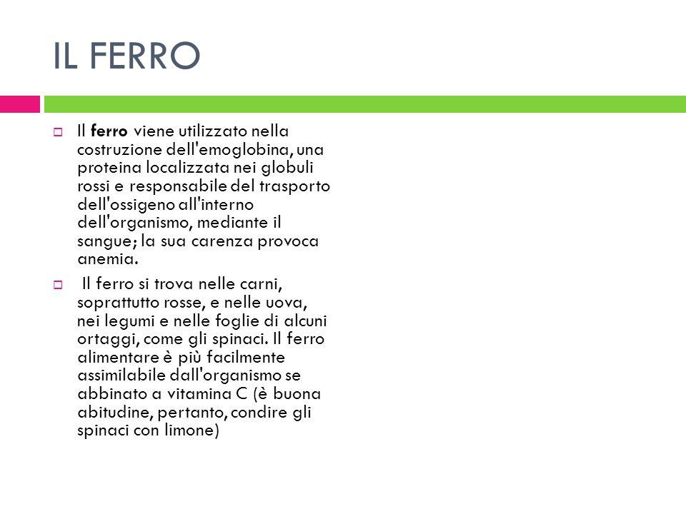 IL FERRO Il ferro viene utilizzato nella costruzione dell'emoglobina, una proteina localizzata nei globuli rossi e responsabile del trasporto dell'oss