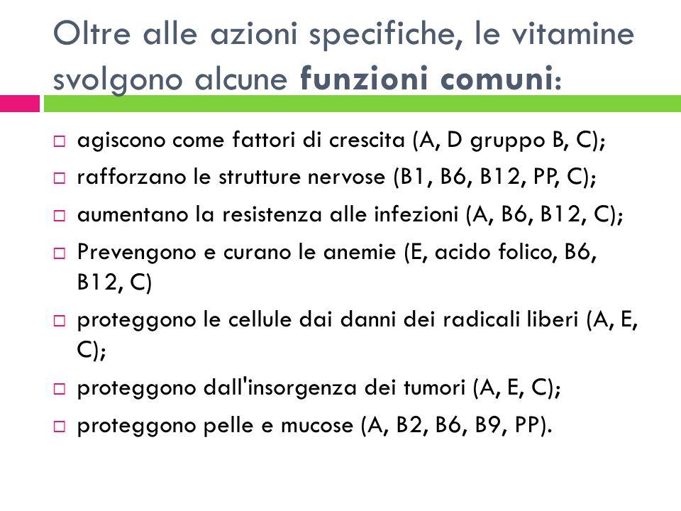 Oltre alle azioni specifiche, le vitamine svolgono alcune funzioni comuni: agiscono come fattori di crescita (A, D gruppo B, C); rafforzano le struttu
