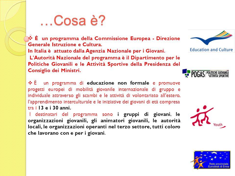 …Cosa è. È un programma della Commissione Europea - Direzione Generale Istruzione e Cultura.