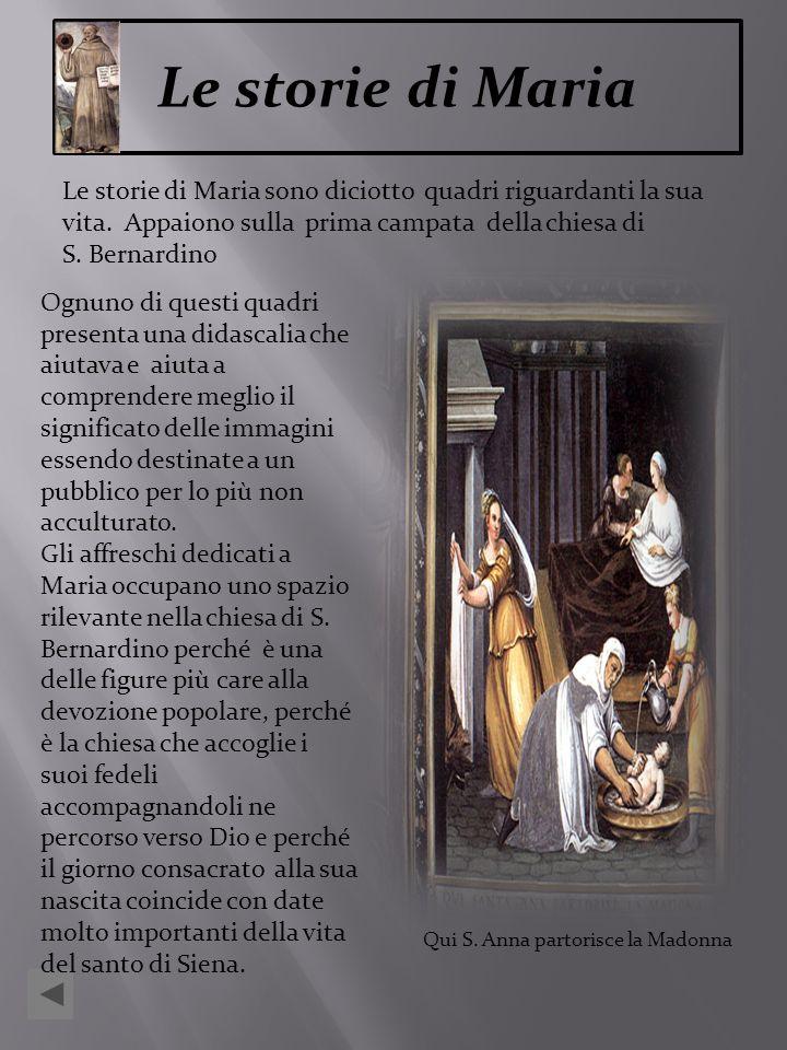 Le storie di Maria sono diciotto quadri riguardanti la sua vita. Appaiono sulla prima campata della chiesa di S. Bernardino Ognuno di questi quadri pr