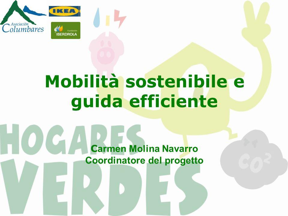 Mobilità sostenibile e guida efficiente C armen Molina Navarro Coordinatore del progetto