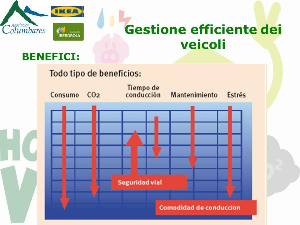 BENEFICI: Gestione efficiente dei veicoli
