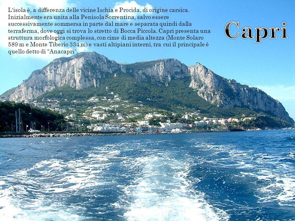 L isola è, a differenza delle vicine Ischia e Procida, di origine carsica.