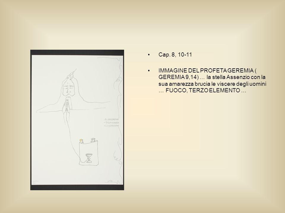 Cap. 8, 10-11 IMMAGINE DEL PROFETA GEREMIA ( GEREMIA 9,14) … la stella Assenzio con la sua amarezza brucia le viscere degli uomini … FUOCO, TERZO ELEM