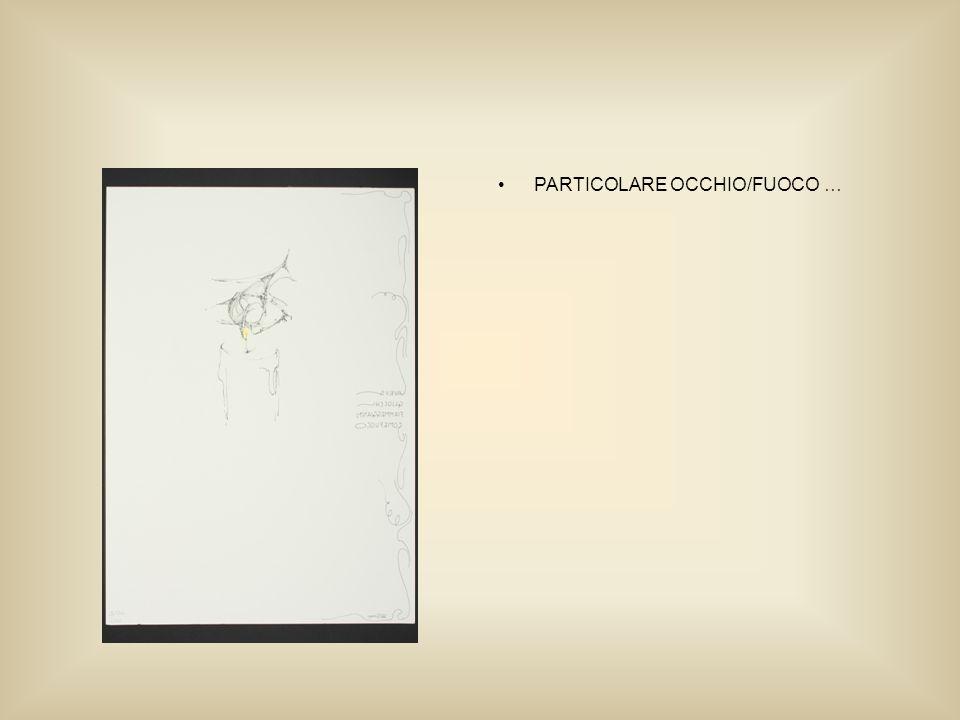 PARTICOLARE OCCHIO/FUOCO …