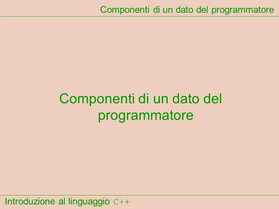 Introduzione al linguaggio C++ Componenti di un dato del programmatore
