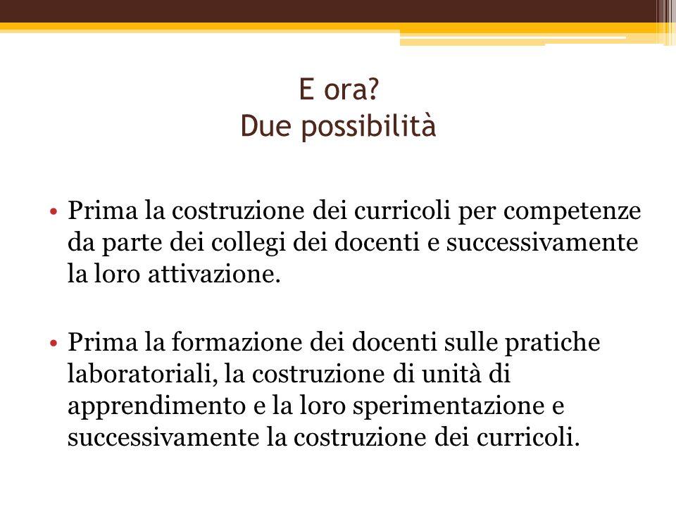 E ora? Due possibilità Prima la costruzione dei curricoli per competenze da parte dei collegi dei docenti e successivamente la loro attivazione. Prima