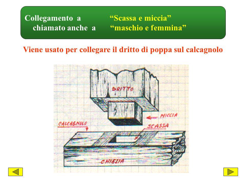 Massiccio di poppa E linsieme dei pezzi strutturali che formano la poppa 1 - Calcagnolo 2 - Dritto di poppa 3 - Controdritto 4 - Paramezzale 5 - Bracciolo C h i g l i a 6 - Prestantino 7 - Pezzi di riempimento 8 - Femminelle 9 - Costole (madieri) Sez.