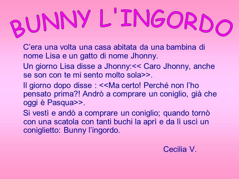 Cera una volta una casa abitata da una bambina di nome Lisa e un gatto di nome Jhonny. Un giorno Lisa disse a Jhonny: >. Il giorno dopo disse : >. Si