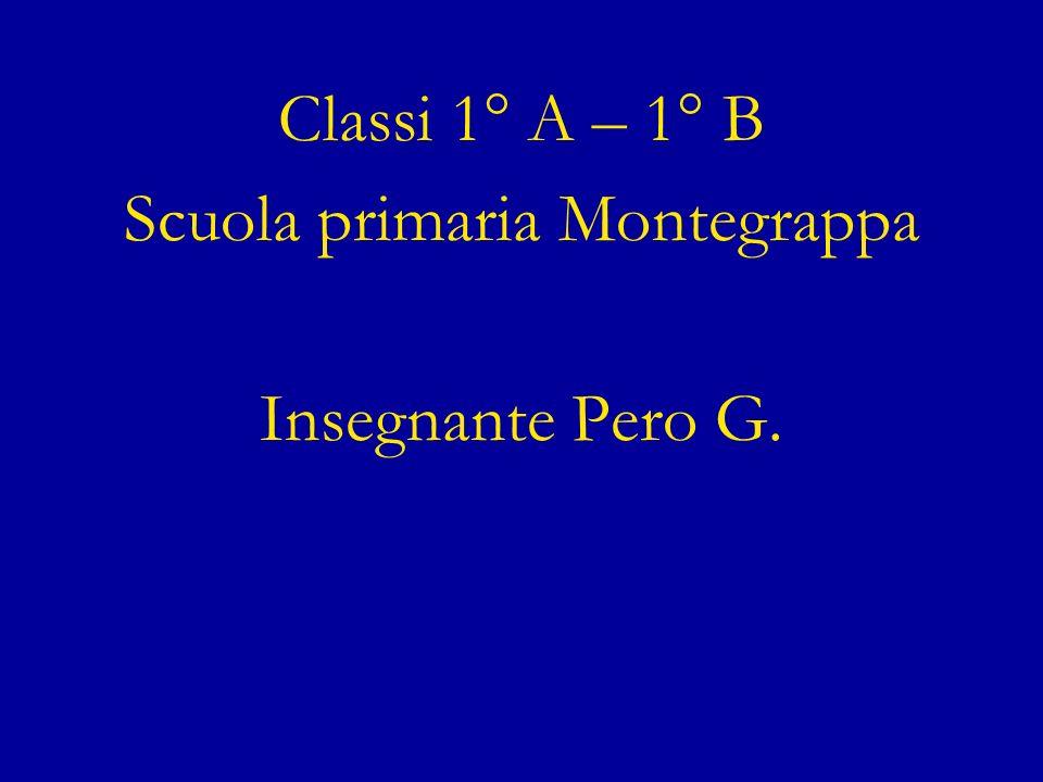 Classi 1° A – 1° B Scuola primaria Montegrappa Insegnante Pero G.