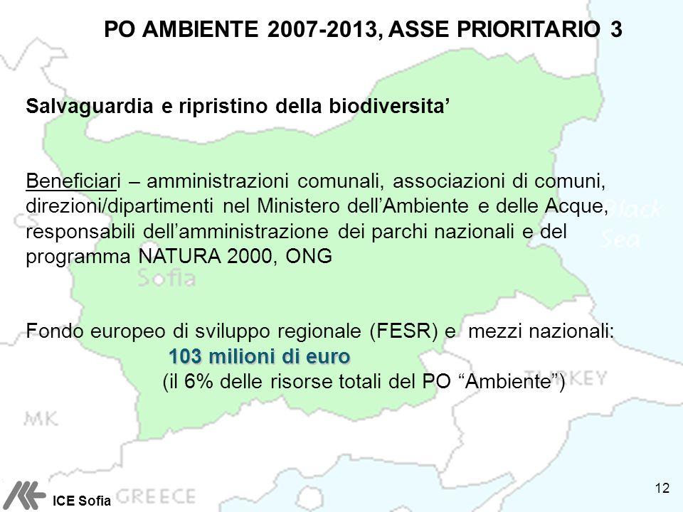 PO AMBIENTE 2007-2013, ASSE PRIORITARIO 3 Salvaguardia e ripristino della biodiversita Beneficiari – amministrazioni comunali, associazioni di comuni, direzioni/dipartimenti nel Ministero dellAmbiente e delle Acque, responsabili dellamministrazione dei parchi nazionali e del programma NATURA 2000, ONG Fondo europeo di sviluppo regionale (FESR) e mezzi nazionali: 103 milioni di euro 103 milioni di euro (il 6% delle risorse totali del PO Ambiente) ICE Sofia 12