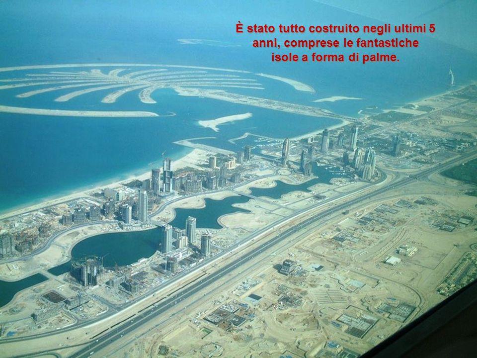 Attualmente il 15% di tutte le gru del mondo si trovano a Dubai.