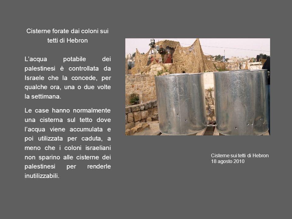 Cisterne forate dai coloni sui tetti di Hebron Lacqua potabile dei palestinesi è controllata da Israele che la concede, per qualche ora, una o due volte la settimana.