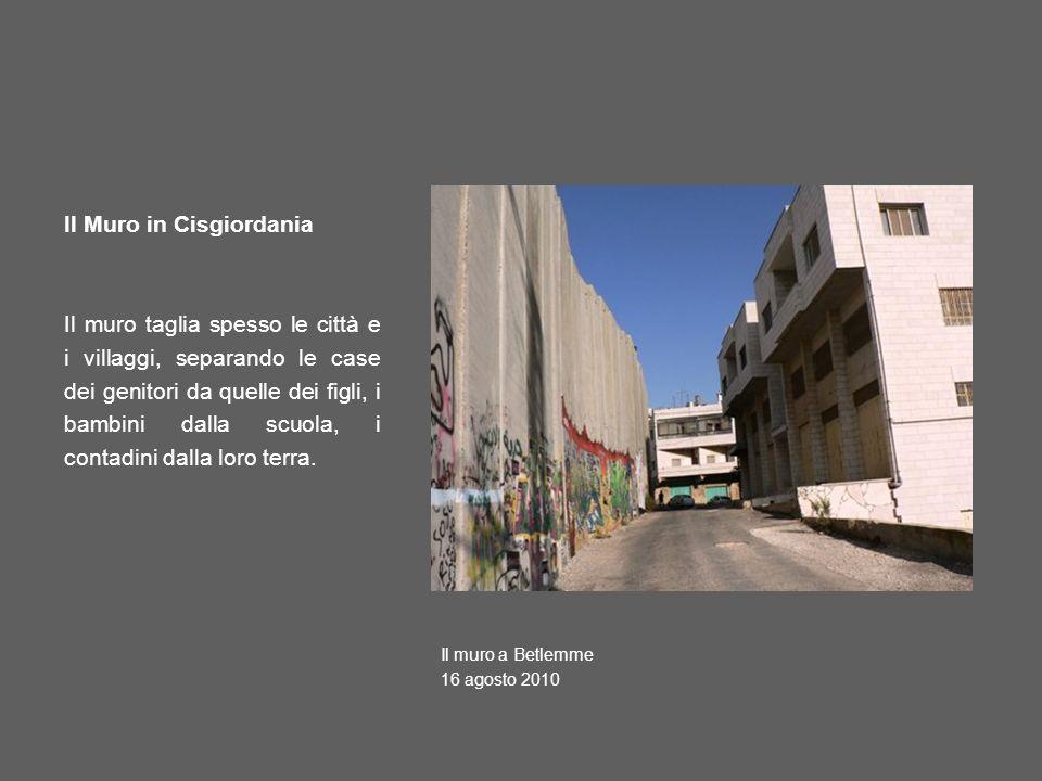 Il Muro in Cisgiordania Il muro taglia spesso le città e i villaggi, separando le case dei genitori da quelle dei figli, i bambini dalla scuola, i contadini dalla loro terra.